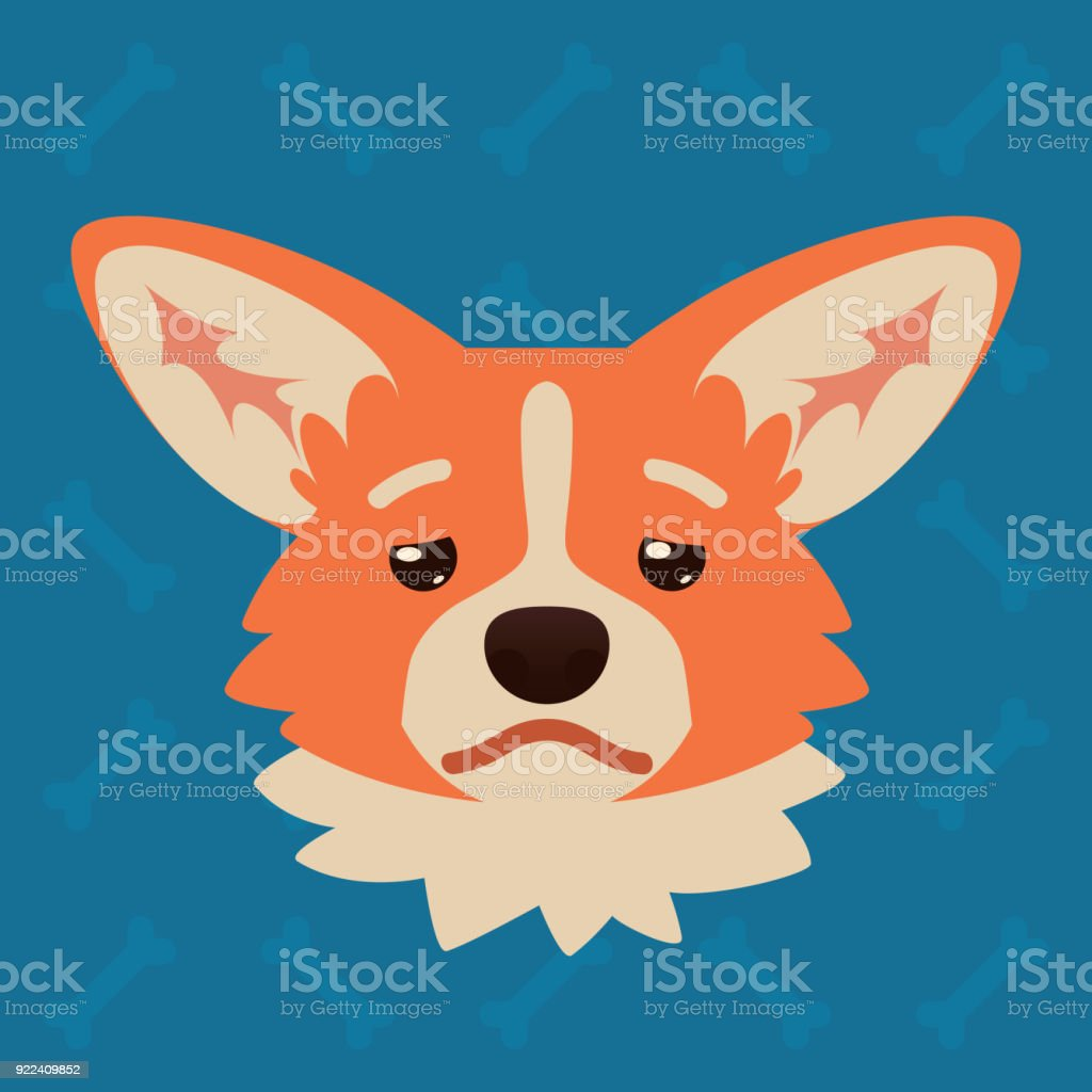 Corgi dog emotional head. Vector illustration of cute dog in flat style shows depressed emotion. Tired emoji. Smiley icon. Chat, communication, print, sticker. Object on blue background. Sadness. vector art illustration