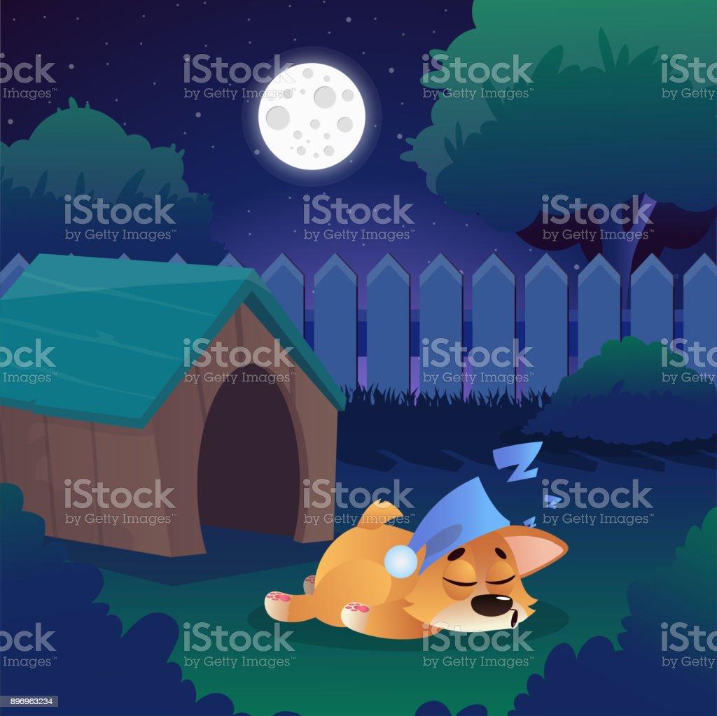 Corgi Schlafen Auf Der Wiese In Der Nähe Seines Hauses Auf Hinterhof. Nacht  Landschaft