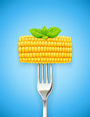 Corn cob at fork. Organic food. Corncob natural meal. Ripe Maize. Product for cooking popcorn. Healthy eating. Vegetable. Realistic foodstuff. Blue Background. EPS10 vector illustration.