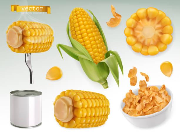 illustrazioni stock, clip art, cartoni animati e icone di tendenza di corn cob, grains, corn flakes. set 3d vector elements. package design - corn flakes