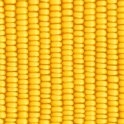 Corn cob. Organic food seamless pattern.