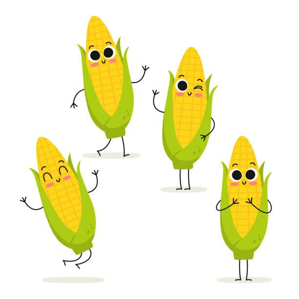 mais. süße gemüse vektor zeichensatz isoliert auf weiss - mais stock-grafiken, -clipart, -cartoons und -symbole