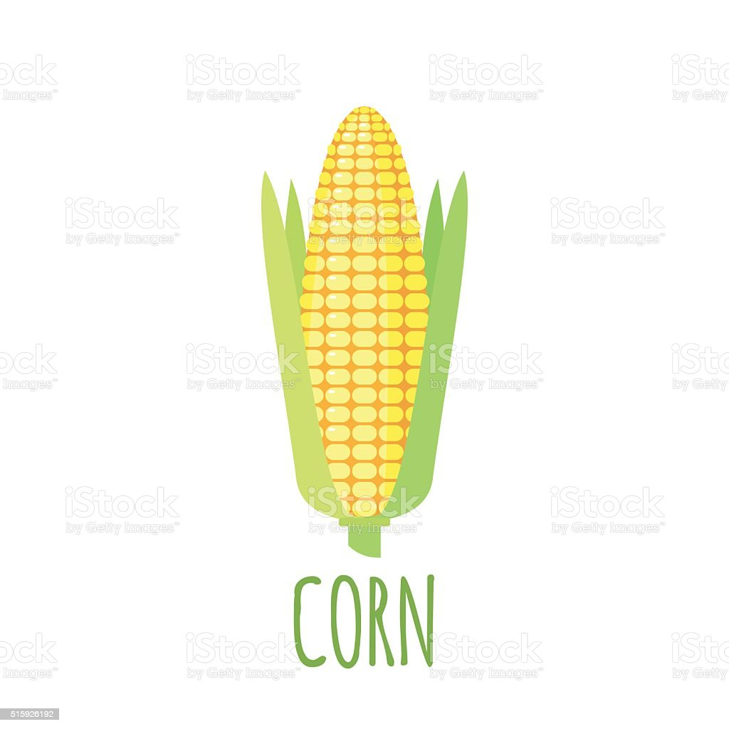 Corn icon in flat style on white background vector art illustration