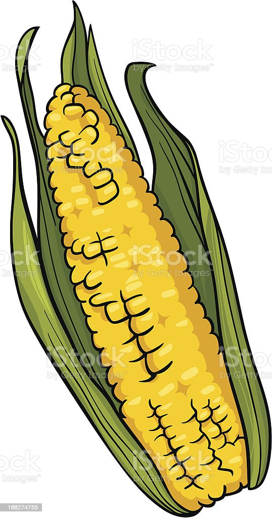 corn on the cob cartoon illustration vector art illustration