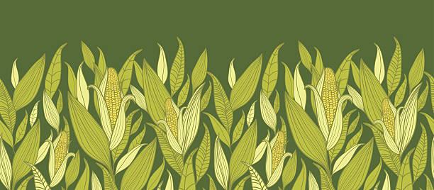 ilustrações de stock, clip art, desenhos animados e ícones de plantas de milho horizontal sem costura de fundo padrão - milho