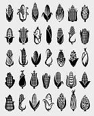 Collection corn set, edit size and color, vector