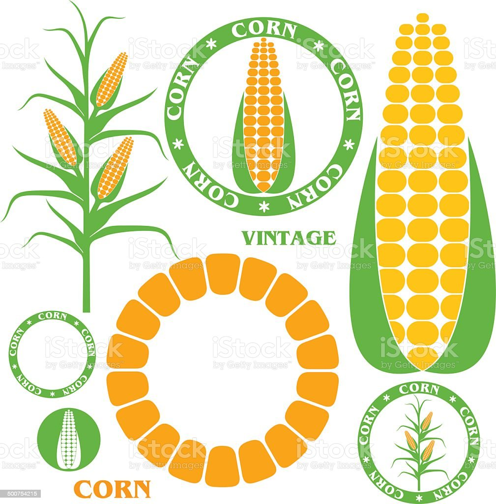 Corn. Set vector art illustration