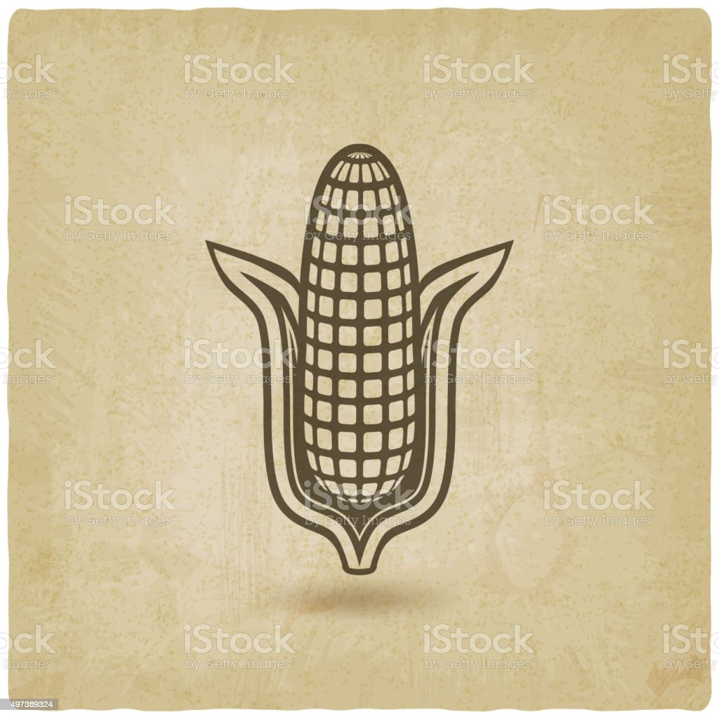 corn symbol old background vector art illustration