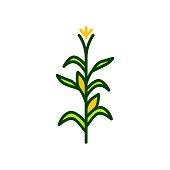 corn tree vector icon illustration color