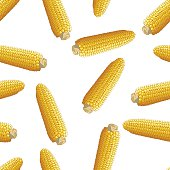 corn vector seamless pattern illustration clip art