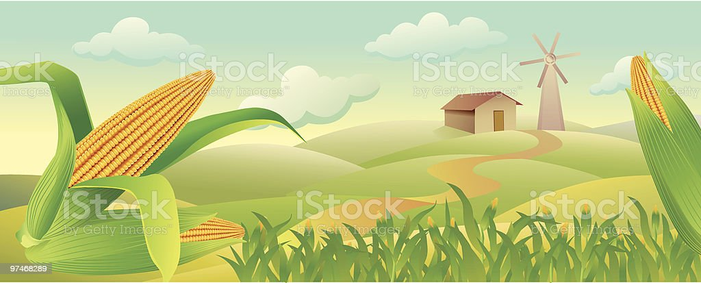 Corn_Field royalty-free cornfield stock vector art & more images of autumn