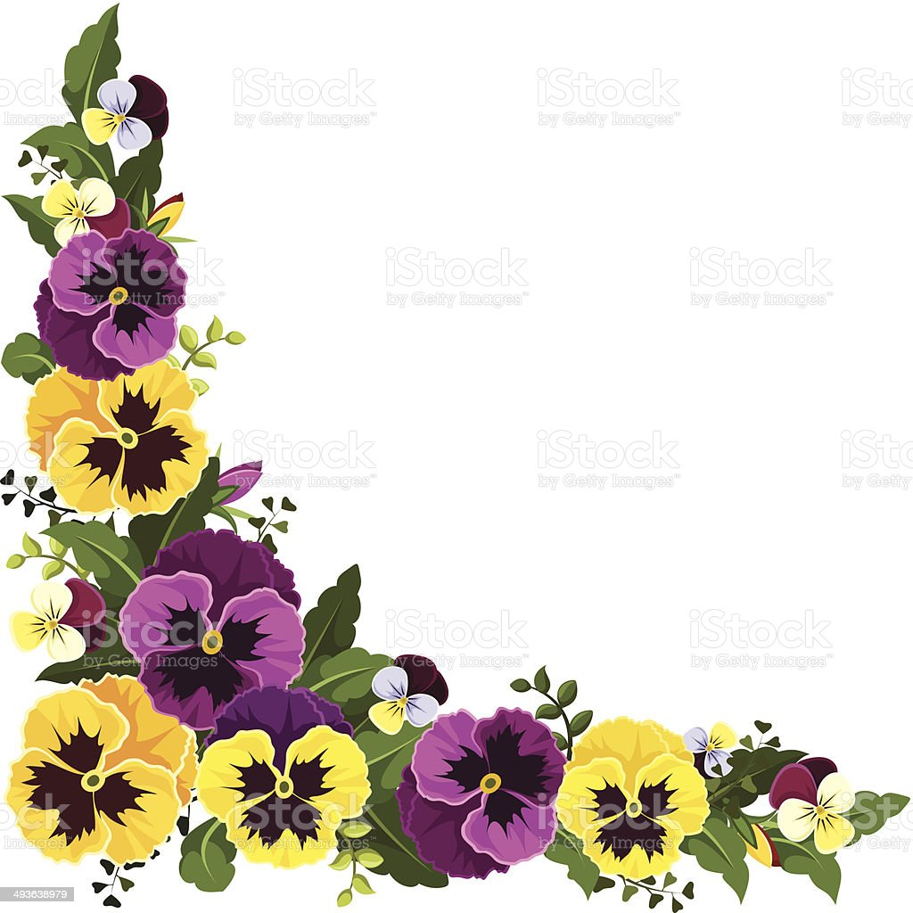 royalty free pansy clip art vector images illustrations istock rh istockphoto com pansy clipart black and white animated panda clipart