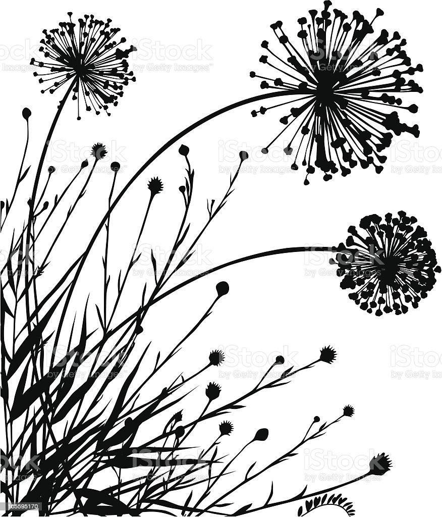 Esquina meadow plantas ilustración de esquina meadow plantas y más banco de imágenes de aire libre libre de derechos