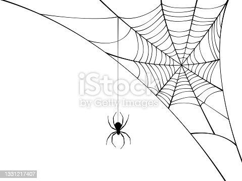 istock Corner spider web with black spider. 1331217407