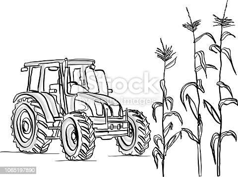 Agriculture vector illustration with tractor and corn plants