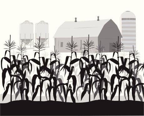 Corn Silhouettes - ClipArt Best   Cornfield Silhouette