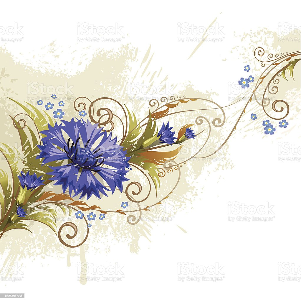 Cornflower royalty-free cornflower stock vector art & more images of abstract