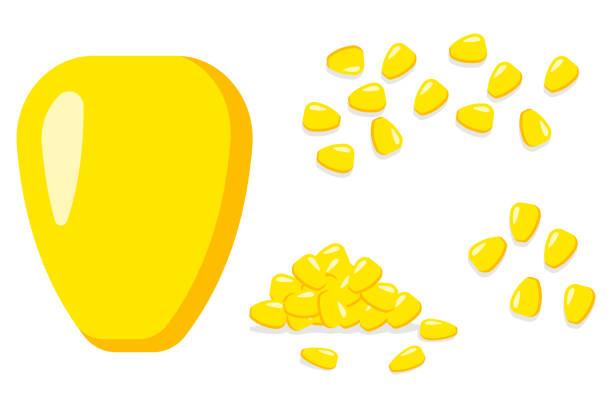 hühneraugen samen cartoon flache vektorgrafik isoliert auf einem weißen hintergrund. haufen von kernel korn eingestellt. - mais stock-grafiken, -clipart, -cartoons und -symbole