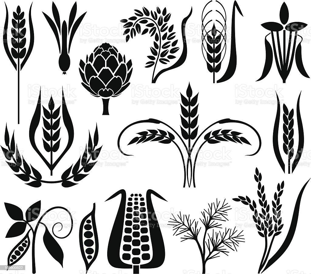 Corn's set vector art illustration