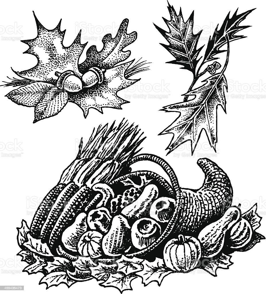Cornucopia and Fall leaves royalty-free cornucopia and fall leaves stock vector art & more images of acorn