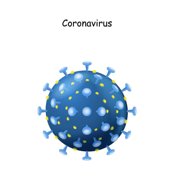 Corona Virus. virion of Coronavirus on white background. 2019-nCoV. Corona Virus. virion of Coronavirus on white background. 2019-nCoV. the virus that caused epidemic of pneumonia in China. Vector illustration for science and medical use sudden acute respiratory syndrome stock illustrations
