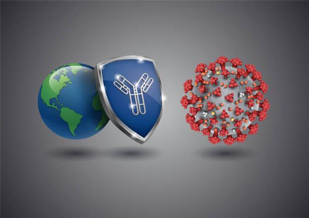 Coronavirus - antibody protects world Antibodies protect humans from coronavirus infection antibody stock illustrations