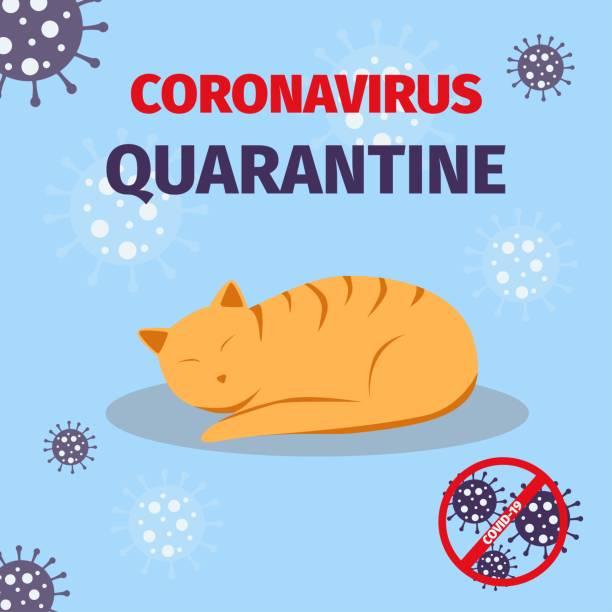 コロナウイルス検疫意識。家にいなさい。covid-19世界的な流行。 - corona newyork点のイラスト素材/クリップアート素材/マンガ素材/アイコン素材