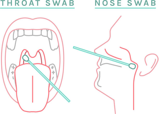 Coronavirus test infographic icon-03 Throat, nose swab icon. Biological material analysis. Positive or negative test result. Viros testing. Pictogram, symbol, sign. Vector illustration on white background. Medical, healthcare concept cotton stock illustrations