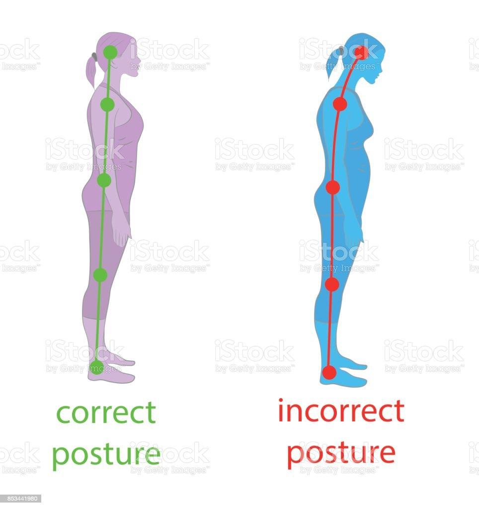Korrekte Ausrichtung Des Körpers In Haltung Für Gute Persönlichkeit ...