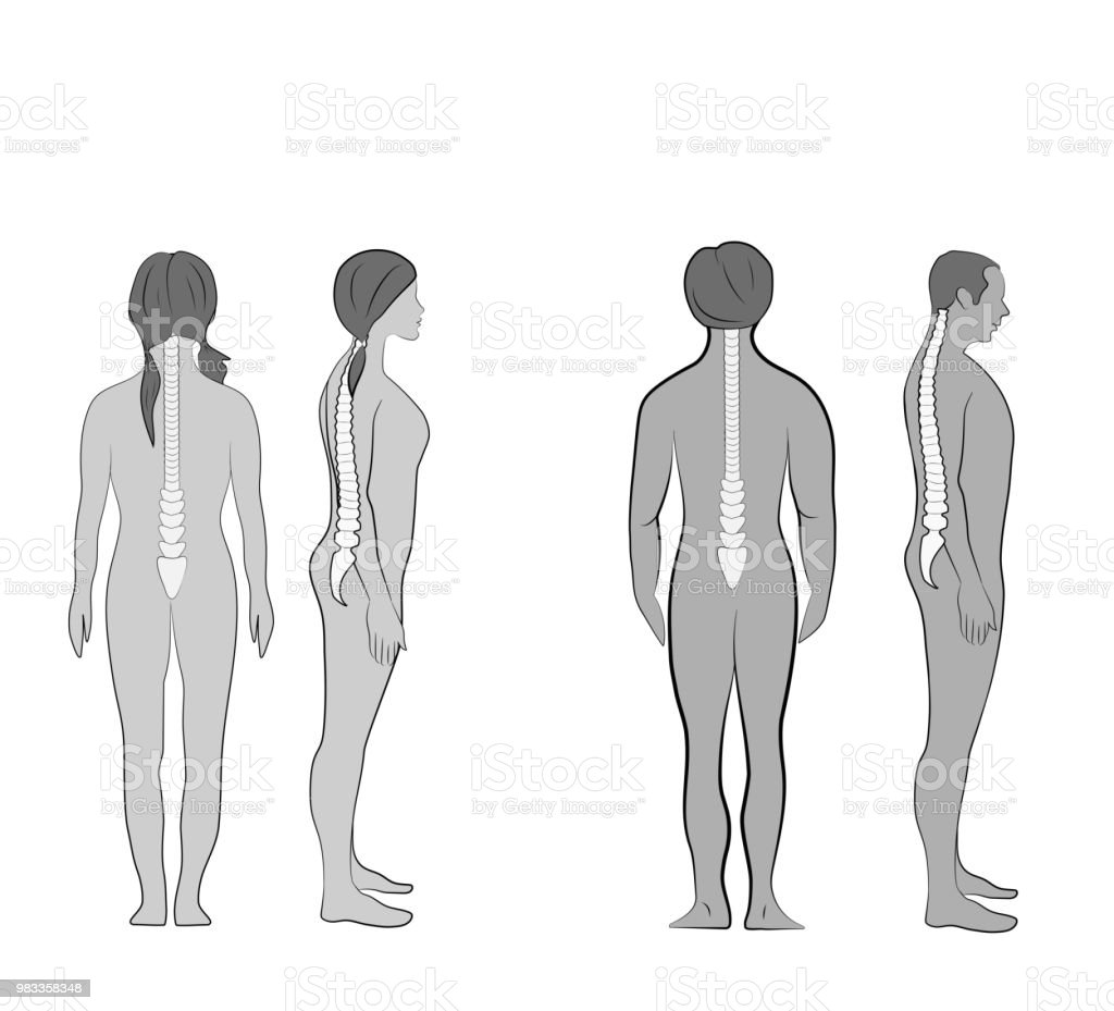 Correct Alignment Of Human Body In Standing Posture For Good
