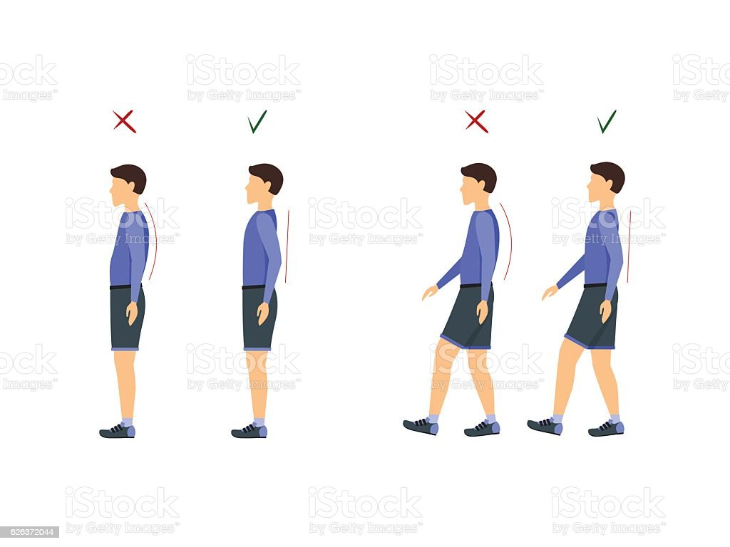 Correct or Incorrect Standing and Walking Posture. Vector vector art illustration