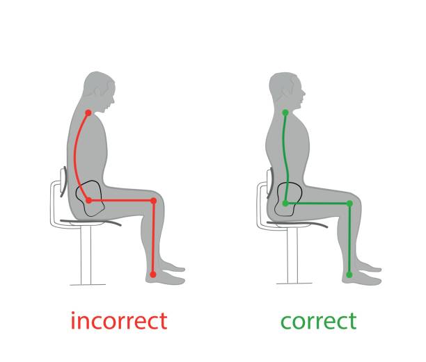correct posture of the spine and pelvis position when sitting on a chair. vector illustrations - physical therapy stock illustrations