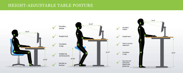 Correct postures for Height Adjustable and Standing Desks Height Adjustable and Standing Desks correct poses. Ergonomics healthy postures. good posture stock illustrations