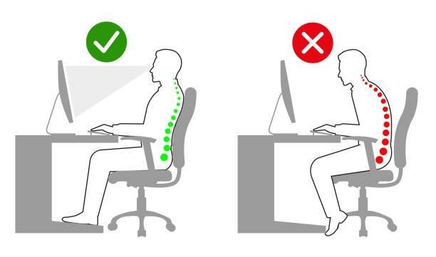 Correct sitting and standing posture when using a computer line drawing Correct sitting and standing posture when using a computer line drawing good posture stock illustrations