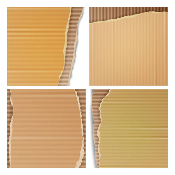 Corrugated Cardboard Vector Set. Realistic Texture Ripped Cardboard Wallpaper With Torn Edges. Logistics Service, Warehouse, Transportation Concept. Vector illustration Corrugated Cardboard Vector Background. Realistic Ripped Carton Wallpaper With Torn Edges. cardboard box stock illustrations