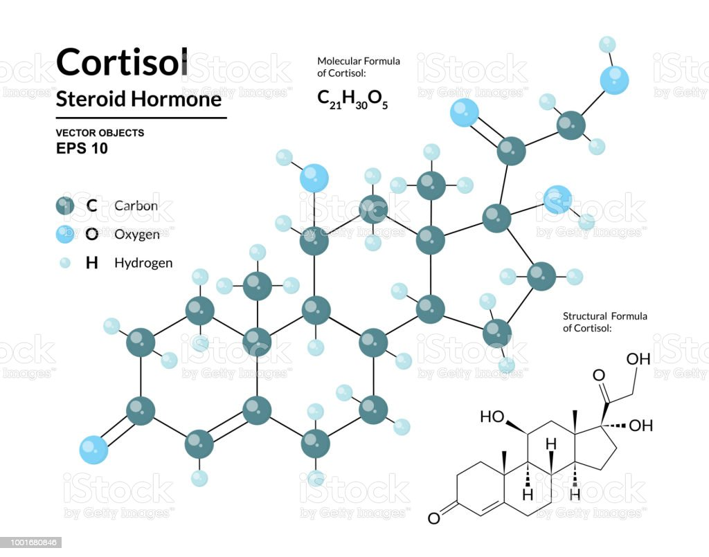 Cortisol Steroid Hormone Structural Chemical Molecular Formula And 3d Oxygen Atom Diagram This Is Our First Model Of Stress