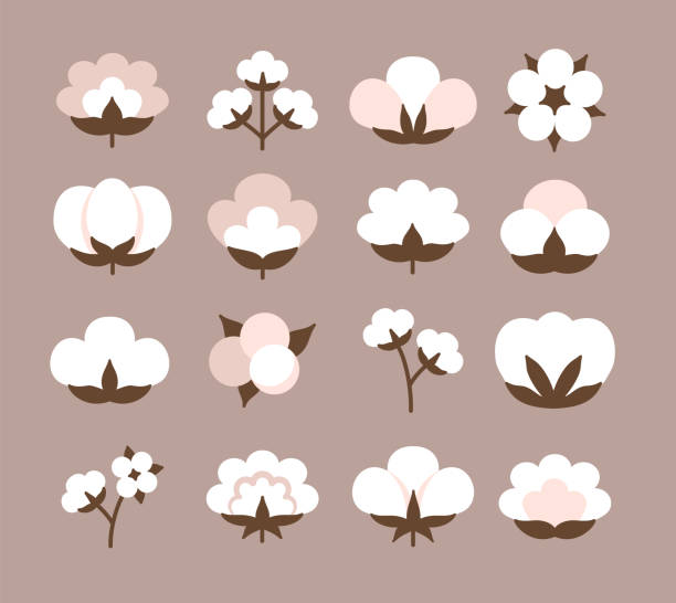 Cotton flower & ball. Beige pastel symbol & logo of natural eco organic textile, fabric. Flat vector icon set Cotton flower & ball. Beige pastel symbol & logo of natural eco organic textile, fabric. Flat icon set. Vector illustration cotton stock illustrations