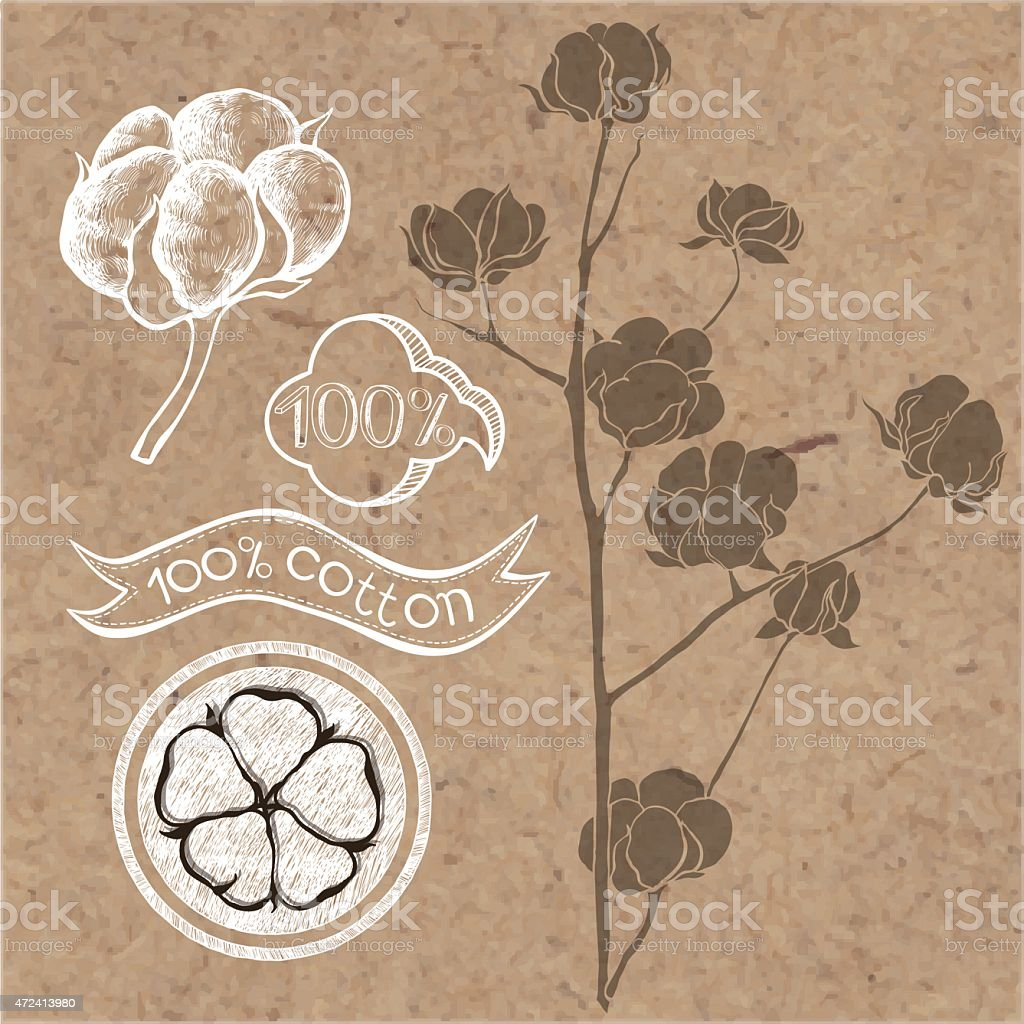 Cotton set, elements isolated on kraft paper background. vector art illustration