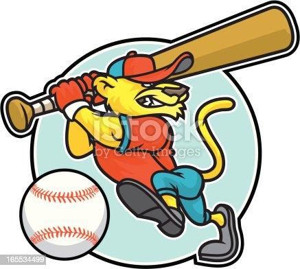 istock Cougar Batter 165534499