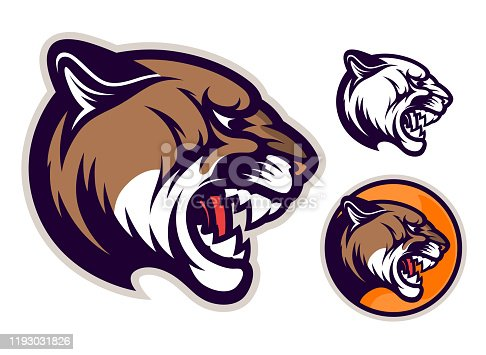 Angry cougar head emblem. Vector illustration.