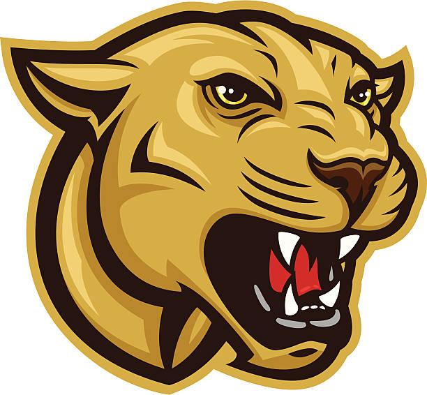 Cougar Head vector art illustration