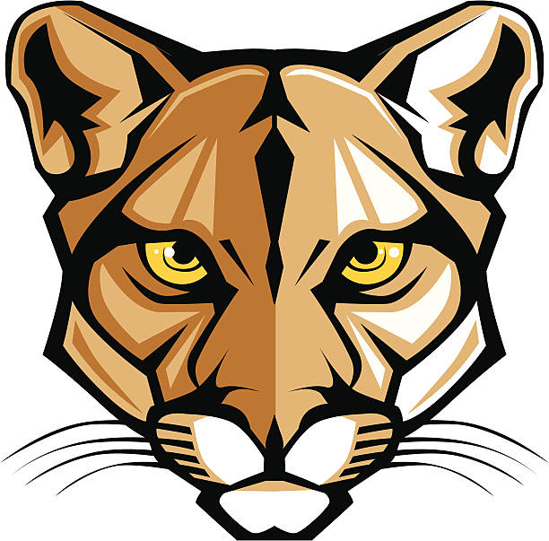 Cougar Panther Mascot Head Vector Graphic Graphic Vector Mascot Image of a Mountain Lion Head mascot stock illustrations