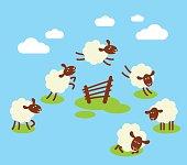 Counting sheep to sleep concept