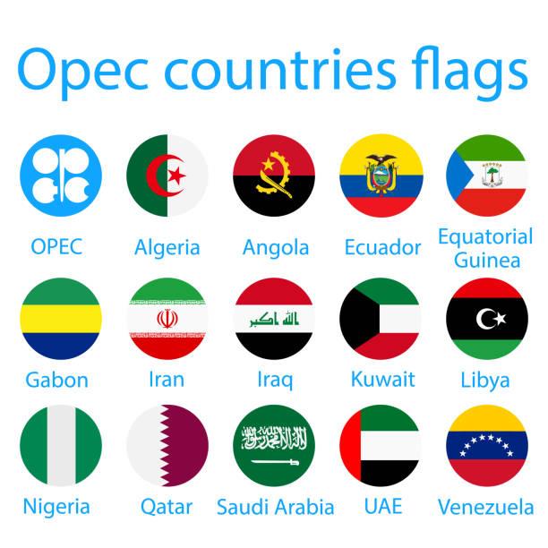 opec-länder flaggen - flagge ecuador stock-grafiken, -clipart, -cartoons und -symbole