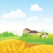Countryside fields