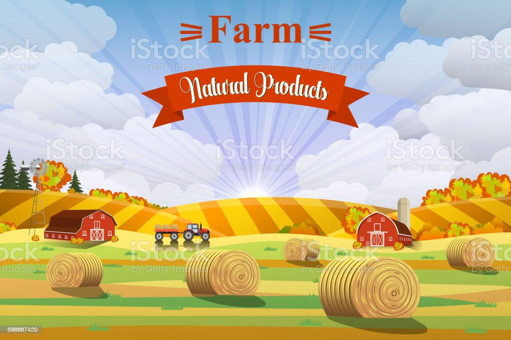 Countryside landscape with haystacks on fields. vector art illustration