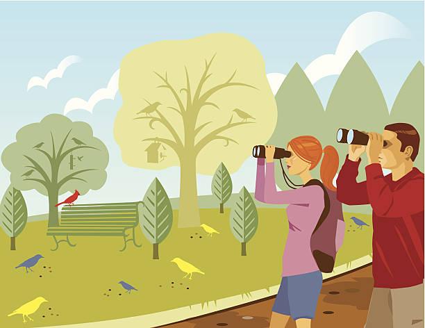 couple birdwatching c - bird watching stock illustrations, clip art, cartoons, & icons