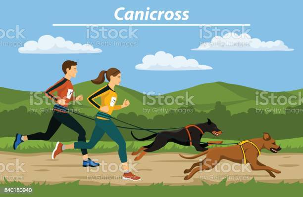 Couple man and woman cani crossing with their dogs in nature vector vector id840180940?b=1&k=6&m=840180940&s=612x612&h=bh9ptfugedud9rpgijz2atvp9rwv ogtdnimgslklok=