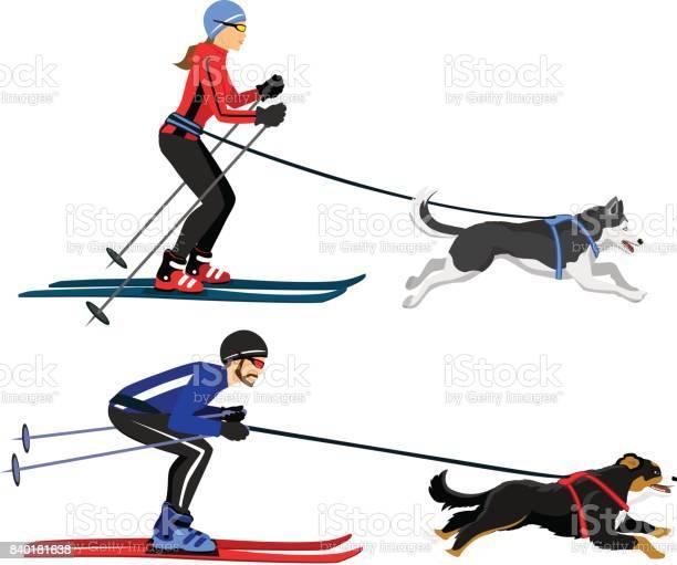 Couple man and woman skijoring with their dogs vector illustration vector id840181638?b=1&k=6&m=840181638&s=612x612&h=agu4yx ioee6kceaw1vzbk olhiy0es17n okwy4yai=