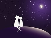 Couple of cats watching stars. Vector eps10 illustration